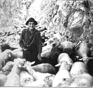Lojz Hosner pastir v 50. letih